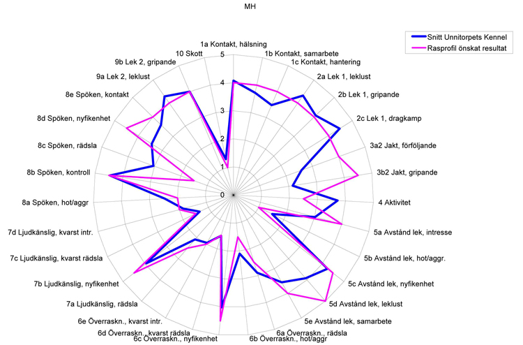 Spindeldiagram